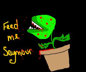 Feed me Seymour...