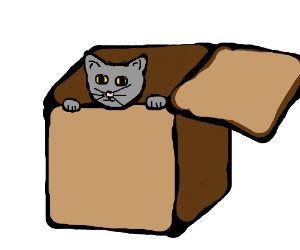 Kitty in a box! So cute.