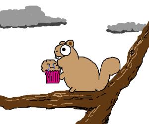 Happy squirrel, sad muffin