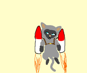 a cat with jetpacks