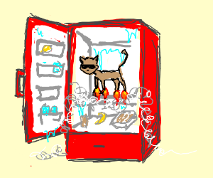 Cat with rocket feet in a red cooler