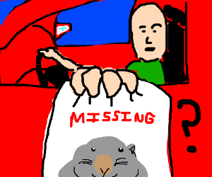 Red car driver seeks missing wombat