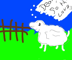 Letter from sheep