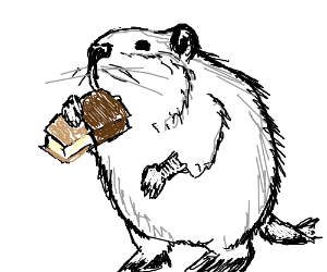 Beaver eating ice cream sandwich