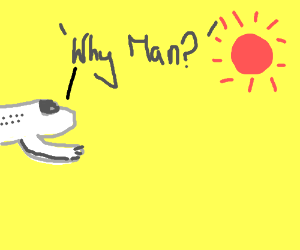 Airplane questions the  yellow sky