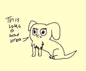 Dog realizes MLP face transplant was bad