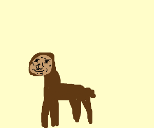 Alpaca Evolution