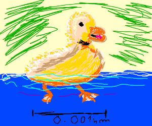 The subatomic duck!