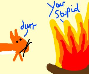 Fox says Durrr, Fire calls it stupid.