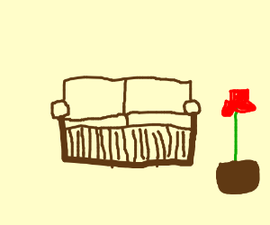 red flower next to a sofa