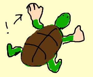 Turtle with big hands.