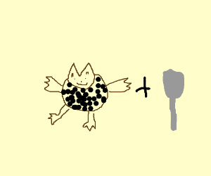 cat and spoon