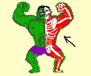 Anatomy of the Hulk