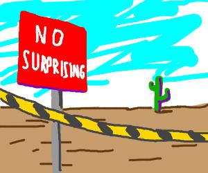 NO SURPRISING ZONE AHEAD