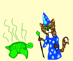 A smelly turtle and a cat wizard