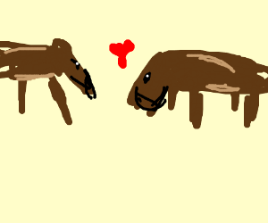2 emo donkeys cuddle