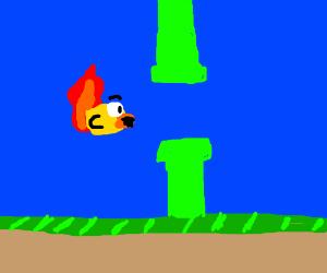 Spontaneous bird combustion