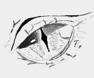 Damn that's a nice eye, like just really nice