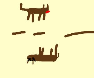 Live dog --- dead dog