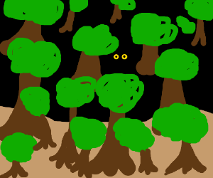 Eyes watch you from within the dark woods