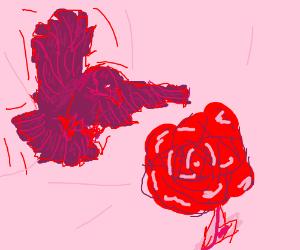 crow lands on a big flower