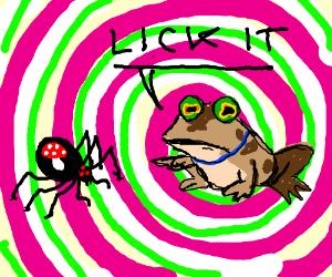 Hypnotoad says lick halucinogenic spider