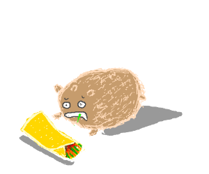 Hamster ate too many burritos