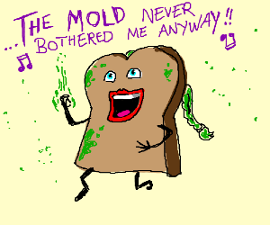 Let it mold! The good bread is gone...