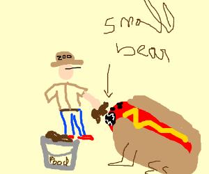 Man feeds small bear hot dog