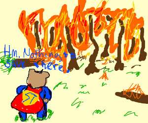 SuperTeddy watches forest fire, doesn't help