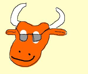 Orange Buffalo with Sunglasses