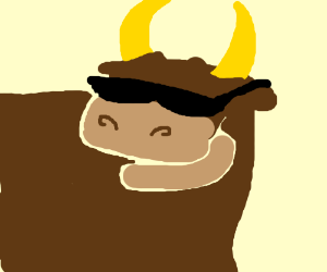 Bull with a cool pair of shades