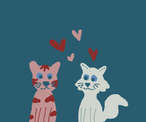 2 cats in love