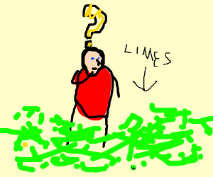 I dont know what to do with all of these limes