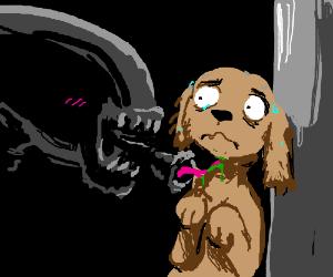 Alien flirts with puppy