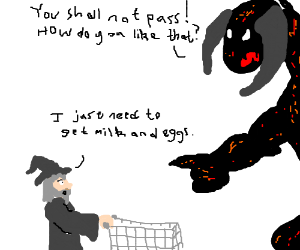 The Balrog won't let Gandalf pass