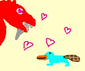 A bearded dragon loves a duck billed platypus!