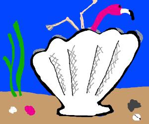 Giant clam devours flamingo...