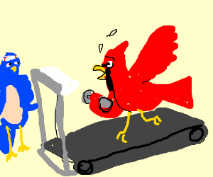 MAD AVIAN WORKOUT BRO