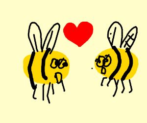 Do you BEE-lieve in love at first sight?