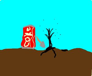Soda discovers oil