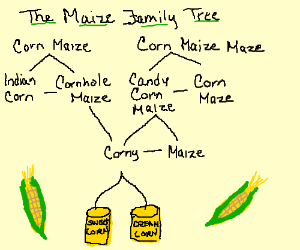 maize family tree(they came from cannned corn)