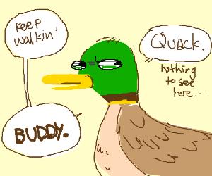 Duck's Secrets