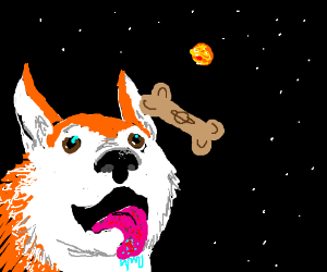 space doggytreat