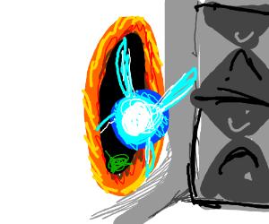 navi goes into the portal