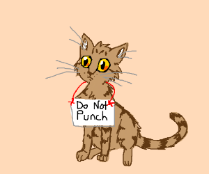 Don't punch that cat!
