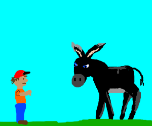 little boy boo's donkey for being black