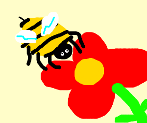 Bee pollinates a red flower.