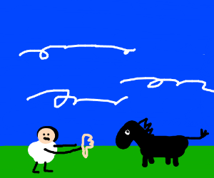 Boy disapproves of black donkey