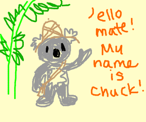 A gray koala introduces self as Chuck